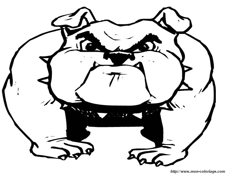 Moderno Colorear Bulldog Americano Embellecimiento - Dibujos Para ...