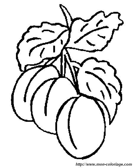 Colorear Frutas Dibujo Albaricoques