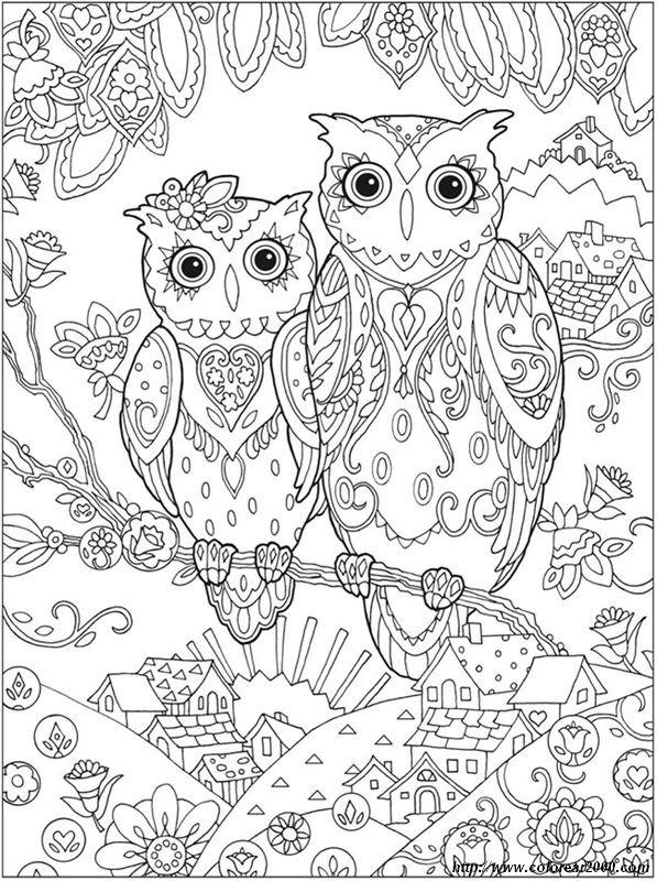 Colorear Para adultos, dibujo Aves para colorear