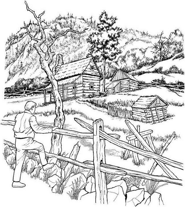 Colorear para adultos dibujo paisaje forestal Landscape coloring books for adults